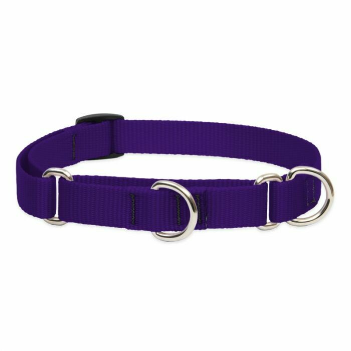 "Lupine Basic 1"" Martingale Collar 19-27"" Purple"