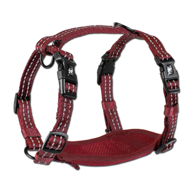 Alcott Adventure Harness Red Small