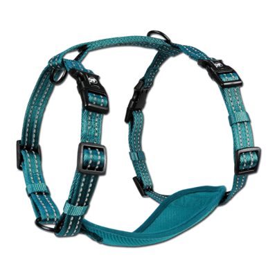 Alcott Adventure Harness Blue Medium