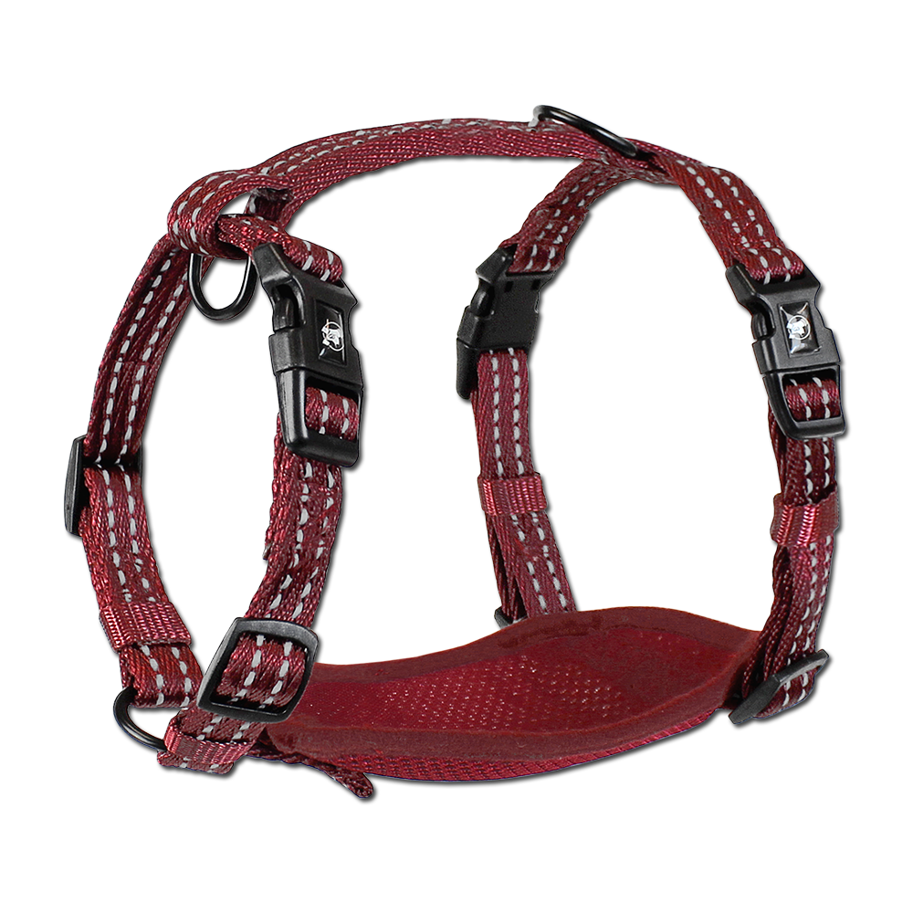 Alcott Adventure Harness Red XSmall