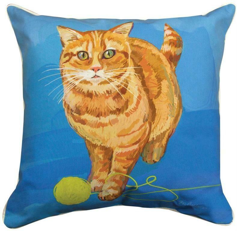 Strider The Orange Cat Pillow