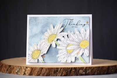 Watercolored daisies and a sentiment that says