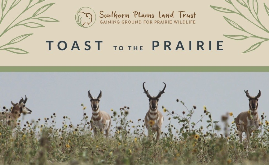 Toast to the Prairie Admission