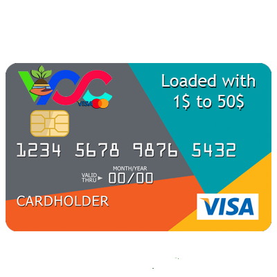 Virtual Visa Card Loaded 40 USD