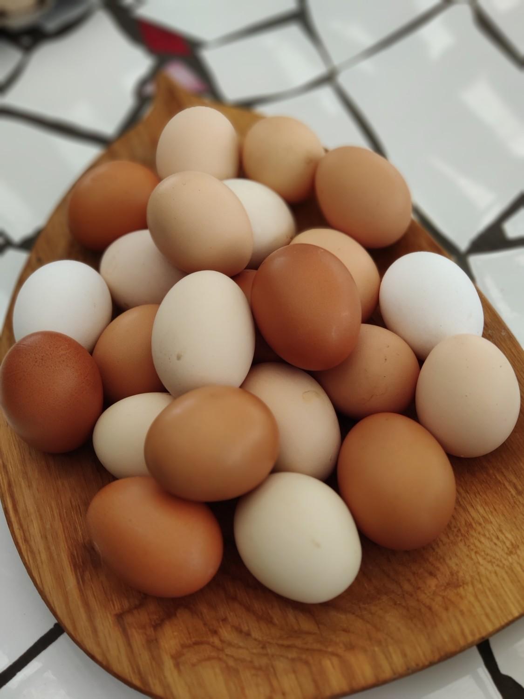 Яйцо куриное 10 шт
