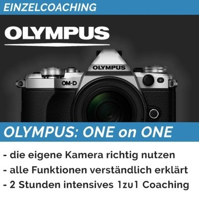 OLYMPUS: ONE on ONE