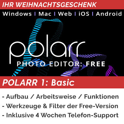 Polarr 1: Basics (XMAS DEAL)