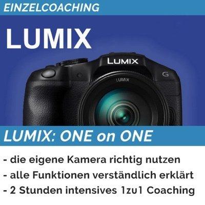 LUMIX: ONE on ONE