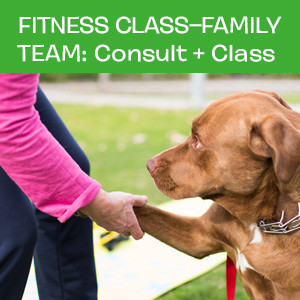 Item 04. Fitness Class – Family Team: Consult and First Class