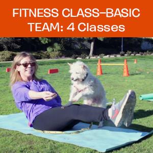 Item 03. Fitness Class – Basic Team: 4 Classes