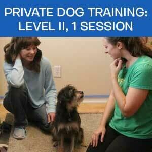 Item 10. Private Dog Training: Level II, 1 Session