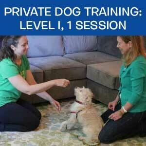 Item 05. Online Private Dog Obedience Training: Level I, 1 Session