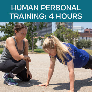 Item 10. Online Human Personal  Fitness Training: 4 Hours