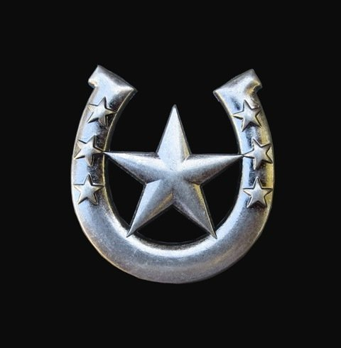 Horseshoe Star Concho T0813
