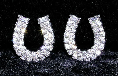 Rhinestone Horseshoe Earrings ~ W6112