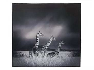 GIRAFFE FAMILY CANVAS PRINT