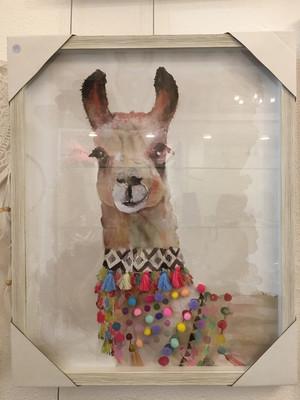 Llama braid framed