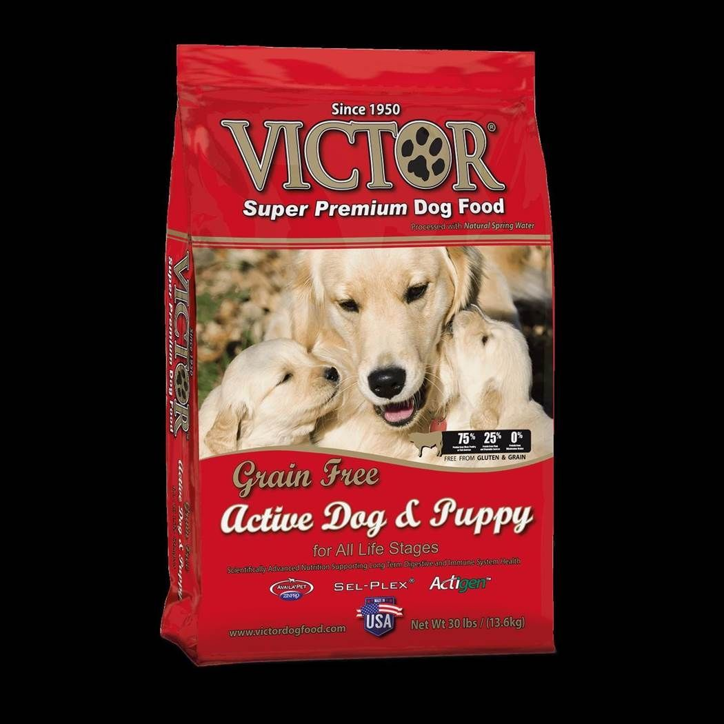 Victor Active Dog and Puppy Formula Dry Dog Food 5lbs-30lbs 00001