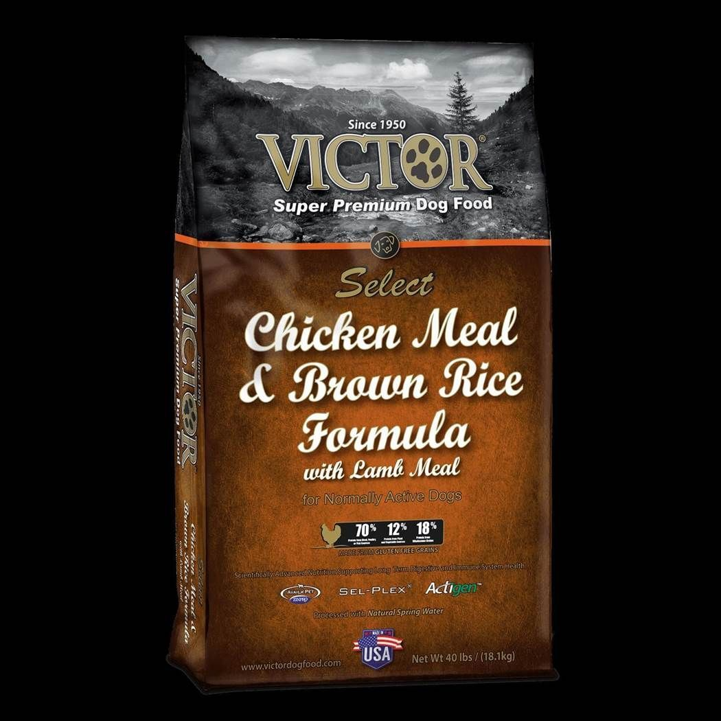 Victor Select Chicken Meal and Brown Rice w/ Lamb Meal Formula Dry Dog Food 5lbs 00005