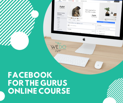 Facebook For The Gurus Online Training