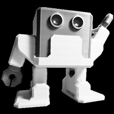 Otto DIY Builder Humanoid Kit