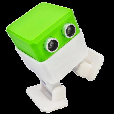 Otto DIY Builder Kit