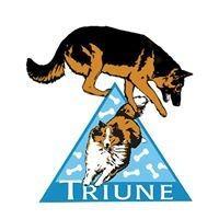 Triune Agility Logo