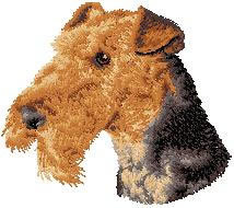 Airedale Terrier D67