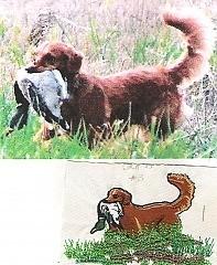 Golden Retriever Hunting 2