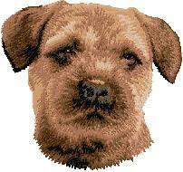Border Terrier D51