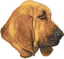 Bloodhound D57