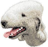 Bedlington Terrier D35