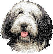 Bearded Collie (302)