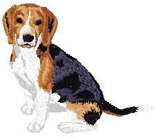 Beagle 3 (body) Dj189