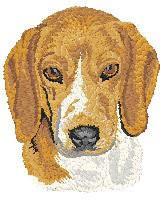 Beagle 2 Dj188