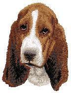 Basset Hound 2 (puppy)