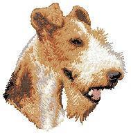 Fox Terrier D107