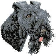 Kerry Blue Terrier D74