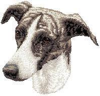 Greyhound D69