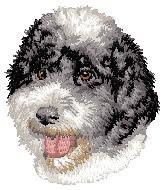Portuguese Water Dog D148