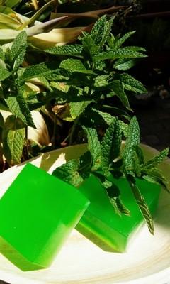 Jabón de Hierbabuena y Aloe Vera