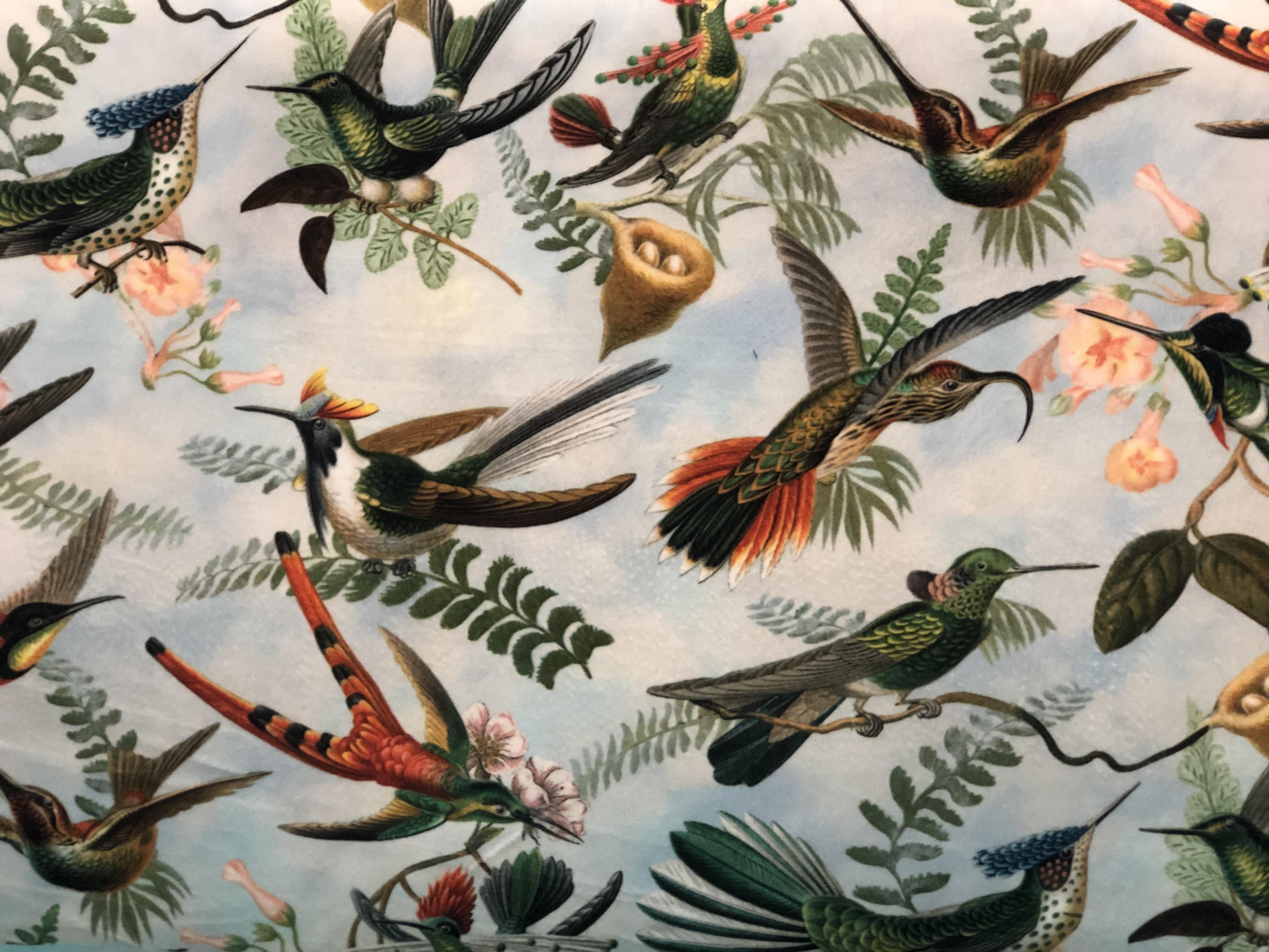 Birds Velvet Crush 00024