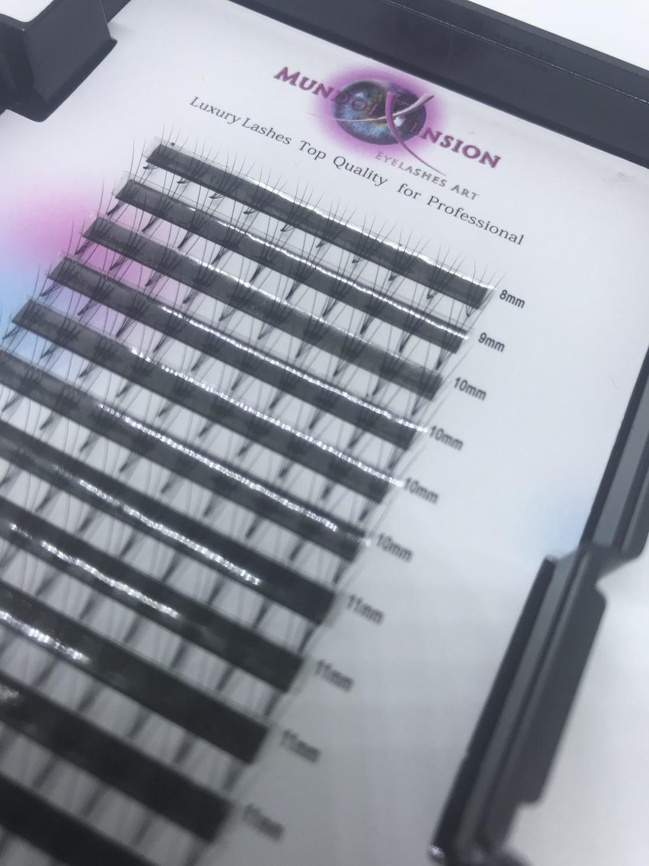 NEW. 3d-6d Ready (ciglia pronte) per tecnica volume Russo CURVA D 00030