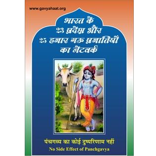 Gavyahaat Poster (HD)