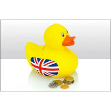 Rubber Duck Money Box