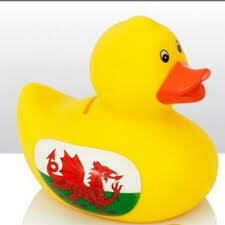 Rubber Duck Money Box Wales