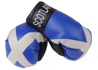 Mini Boxing Gloves Scotland St Andrews