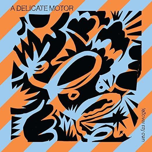 Fellover My Own -  A Delicate Motor (Artist)