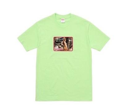 Supreme Larry Clark Naked Girl Tee Green