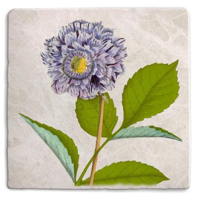 Flowers 02